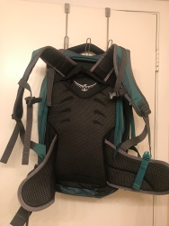 Back support and straps.